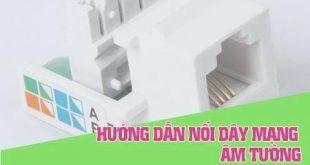 cách bấm dây âm tường